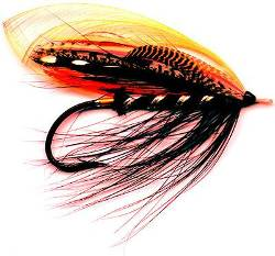 black dog fly pattern