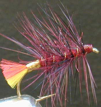 clan chief variant fly pattern