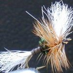 h & l variant fly pattern