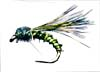 reedbuck emerger fly pattern