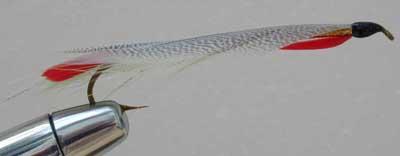 asquam smelt fly pattern