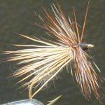 adams caddis fly pattern
