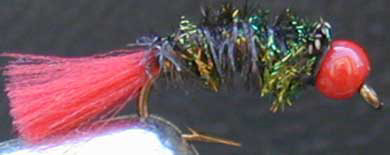 bead head nymph fly pattern
